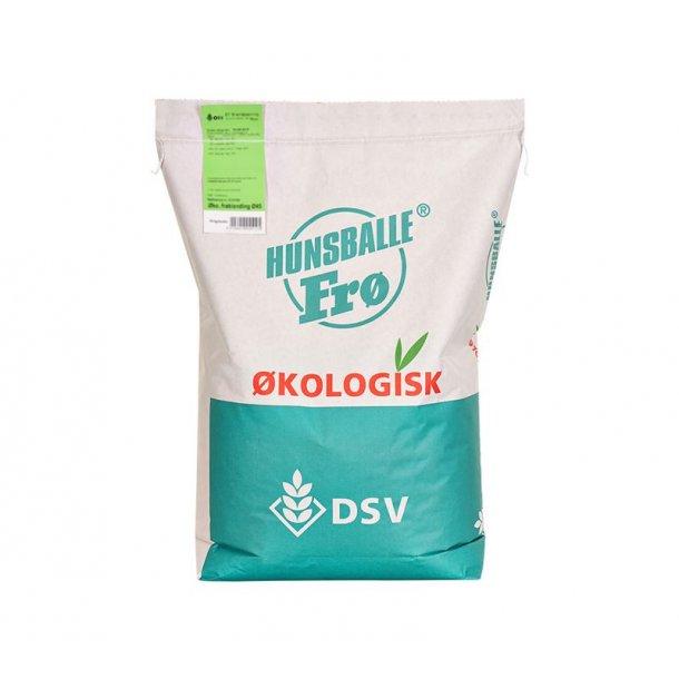 Græsfrø | ØKO - 10 kg | DSV