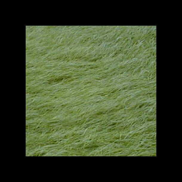 Alm. rajgræs - 10 kg